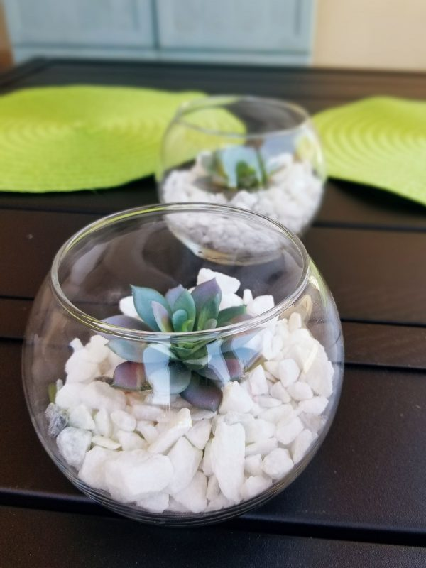 Quick Dollar Tree Succulent Table Decor With Love Joey