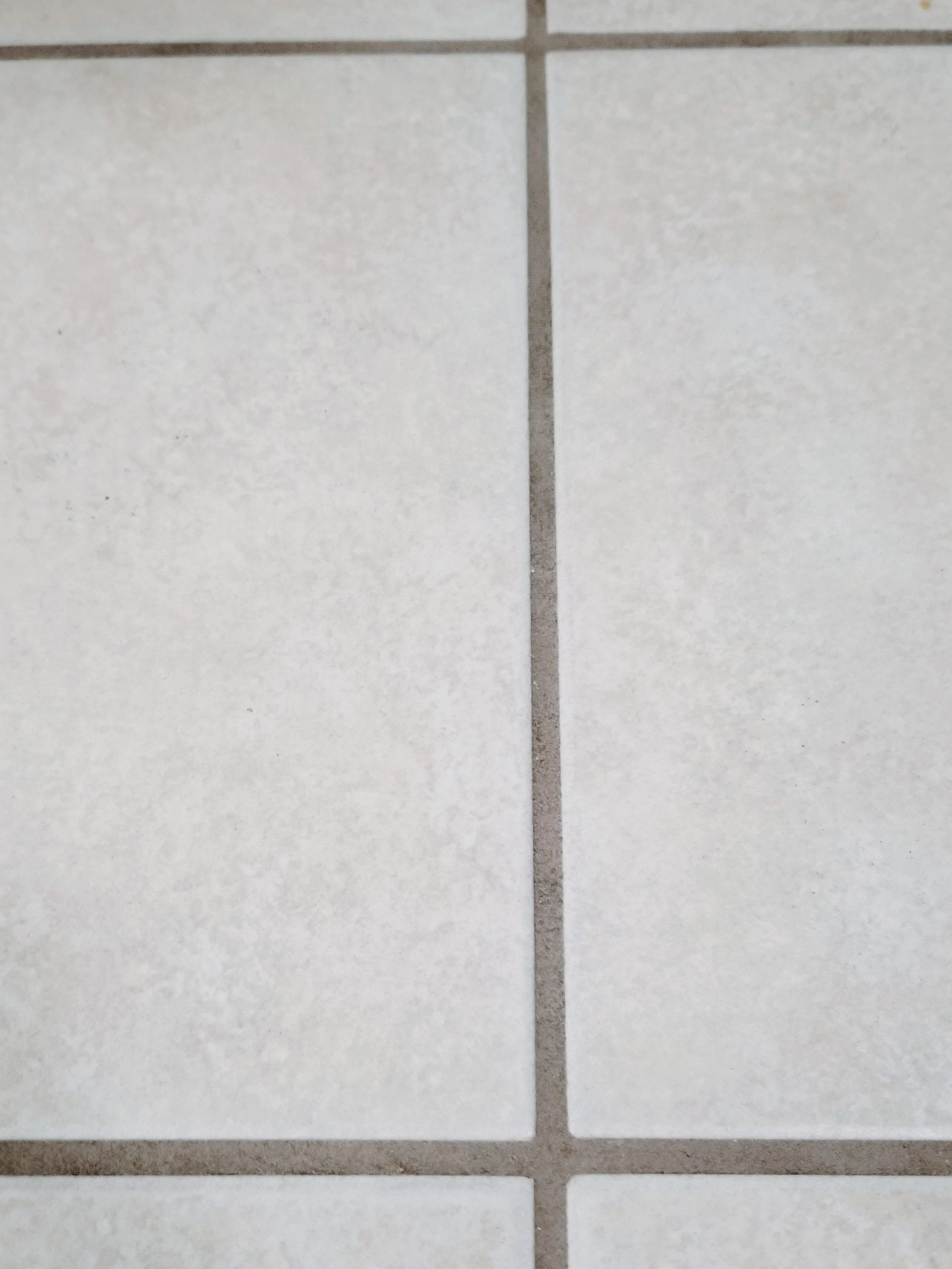 Bissell PowerFresh Deluxe Steam Mop After